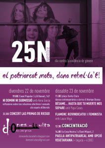 25-11-2013 dia contra la violència de gènere Dones en Lluita - Castelló de la Plana
